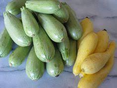 Resultado de imagen de crook zucchini
