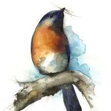 bird art bluebird art sky bluebird watercolour archival print of bluebird painting