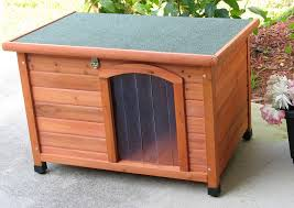 dog house insulated