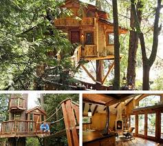 10 amazing tree houses plans pictures designs ideas u0026 kits cool tree houses to build s81 houses