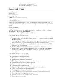 mis manager resume quality control resume best free builder mis executive job