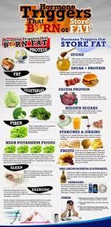 Fat Burning Food Chart Eric Berg Fat Burning Food Chart Eric Berg What Type Of Protein