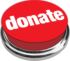 Image result for images of donate now buttons
