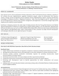 Sample Business Resume Business Owner Resume Examples Former