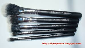 crown duo fiber brush review