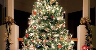 When Is The Best Time To Put Christmas Decorations Up And Where To When Should You Buy A Christmas Tree