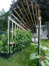 Small Picture 5 Terrific Tomato Trellis Ideas for Easier Picking and Cleaner