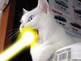 cats shooting lasers out of their eyes. Perfect Cats Note All Three Cats Are Zechsu0027 Intended Cats Shooting Lasers Out Of Their Eyes