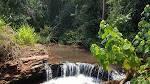 imagem de Japurá Paraná n-15