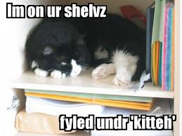 LOLCats and Libraries: A Conversation with Internet Librarian ... via Relatably.com
