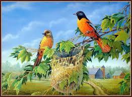 """Résultat de recherche d'images pour """"centerblog belle image d'oiseaux"""""""