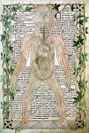 High Middle Ages Medicine