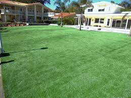 Fake Grass Carpet Lehigh Acres Florida Design Ideas Kids Swimming