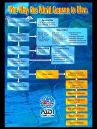 Scuba Diving Malaysia Red Monkey Divers Miri Padi And