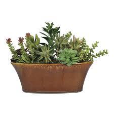 decorative plants for office. Full Size Of Decorative Brown Ceramic Office Desk Planter Mini Artificial Succulent For Garden Original Ornamental Plants G