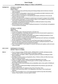Internal Auditor Resume Objective Internal Auditor Resume Sample It Audit Senior Experience Samples 44