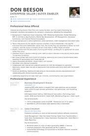 Business Development Director Resume samples