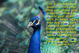 Peacock Beauty Quotes Best of Like A Peacock Your Beauty Is Multiplied When You Spread Your Wings