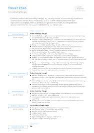 Marketing Manager Resume Samples Templates Visualcv