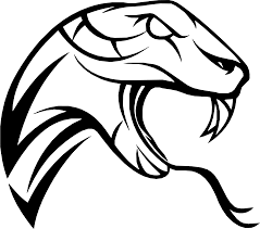 rattlesnake head clip art. Brilliant Head Snake Symbol Drawing  Snake 22401976 White Black And Line Art  Head Monochrome Photography Monochrome Fictional Character Line Artwork  Intended Rattlesnake Head Clip Art