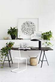 modern office plants. Then You Need To Place Your Office In The Hallway Or Under Staircase. Modern  Offices Are Heavily Air-conditioned And Modern Plants W