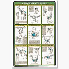 Shoulder Chart Workout Fitness And Weightlifting Charts Fitnus Chart Shoulder