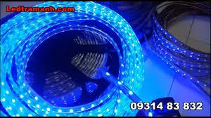 Đèn led dây 5050 220v, đèn led dây 3014 220V 100 mét trang trí ngoài trời -  YouTube