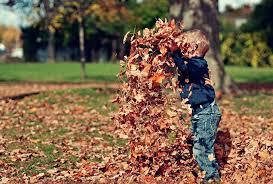 Résultats de recherche d'images pour «automne»