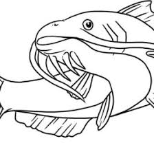 Small Picture Coloring Page Of Catfish Kids Drawing And Coloring Pages Marisa