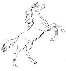rearing horses drawings. Modren Rearing Rearing Horse Image Drawing In Horses Drawings T