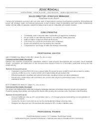 travel profile 8 sample company profiles templates profile samples in