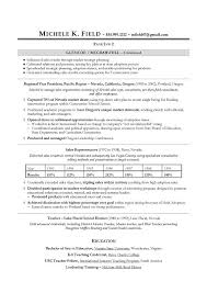 Sales Resume Examples Simple Resume Template Top Sales Resumes Examples Free Career Resume