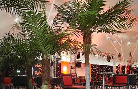 We have artificial palm trees for rent in Toronto. tree, plants, flowers, hedges, boxwood flower walls. 1 Palm Tree Rentals Toronto | Artificial Trees, Tropical Fake