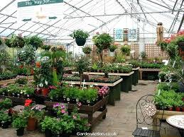 denver garden centers. Garden Centers Near Me Design Nursery Brilliant Denver O