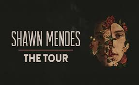 Image result for shawn mendes moda center 2019