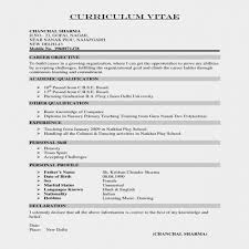 Activities Resume Format Beauteous Engineering Resume Format Fresh Sample R Sum For Sales Assistant Job