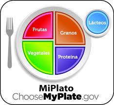 food plate in spanish. Beautiful Food JPG Throughout Food Plate In Spanish E