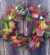 Small Picture Best 20 Australian flowers ideas on Pinterest Australian native