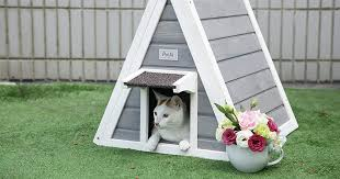 15 best cat houses and condos 2019