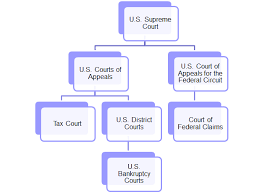 Court Jurisdiction Of Tax Issues And Appellate Structure