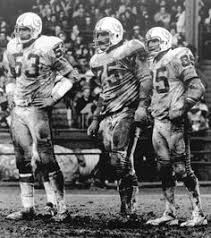 1972 Miami Dolphins Depth Chart 452 Best Phins Fan Images Miami Dolphins Dolphins Nfl