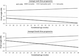 Human Chorionic Gonadotropin Hcg Concentrations During The