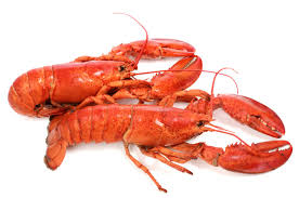 Important Lobster Nutrition Data and ...