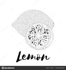 レモン塗り絵のページです落書きデザイン果物光ベクトルを示す