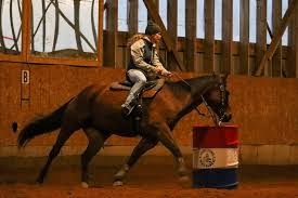 Horse Show Photos by Tracy Barton added... - Horse Show Photos by Tracy  Barton | Facebook
