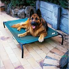 Coolaroo Elevated Pet Bed with Breathable Fabric 51 1