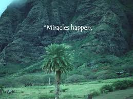 Image result for miraculous nature