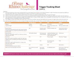 Sample Tracking Sheet The Orange Rhino Trigger Tracking Sheet Sample The Orange Rhino 15