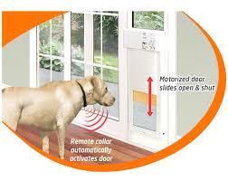 replacement dog door flaps replacement dog door image inspirations flap for large insert sliding glass ruff replacement dog door