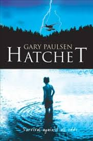 hatchet lesson 5 chapters 10 11 essential question how can we determine the types of conflict in a story